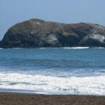 SanFran_071_MarinHeadlands